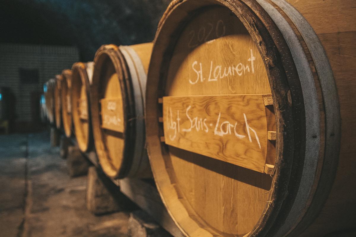 Barriquefässer im Weinkeller