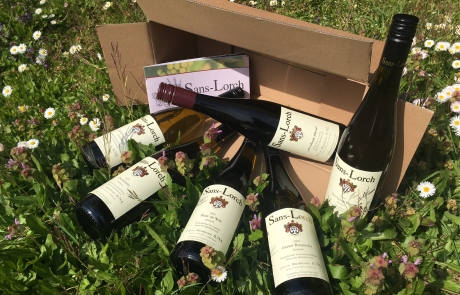 6 Flaschen neue Weine